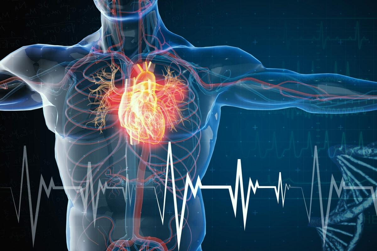 Saurav Ganguly heart attack : Cardiologist Rajneesh Kapoor advisory on mild heart attack